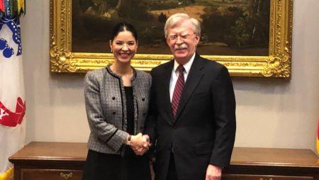 Viceprim-ministrul Ana Birchall, discuții la Washington D.C. cu John Bolton, consilierul prezidenţial american pentru Siguranţă Naţională