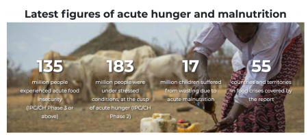 criza alimentara globala